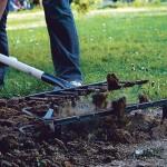 Рыхлитель садово-огородный крот