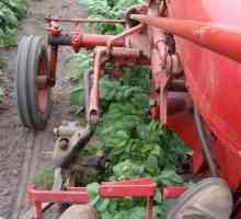 Окучивание картофеля мотоблоком – экономия сил и времени